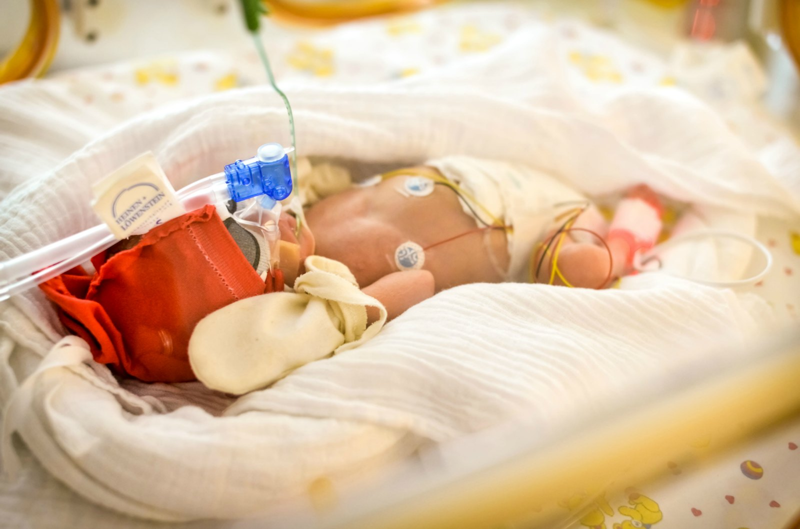 Helping Newborns and Their Parents Breathe Easier