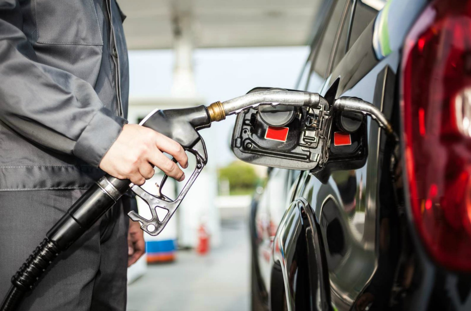 Cellulosic Ethanol Technology Holds Key to Inexpensive Fuel