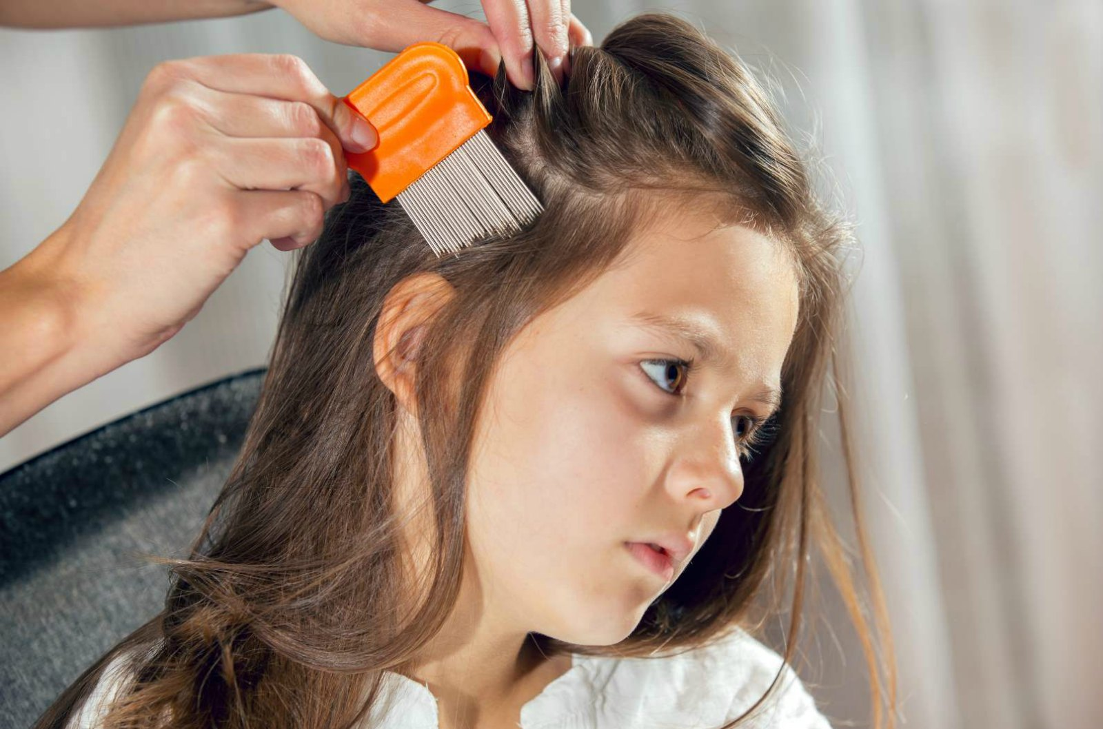 Device Kills Head Lice in One 30-Minute Application