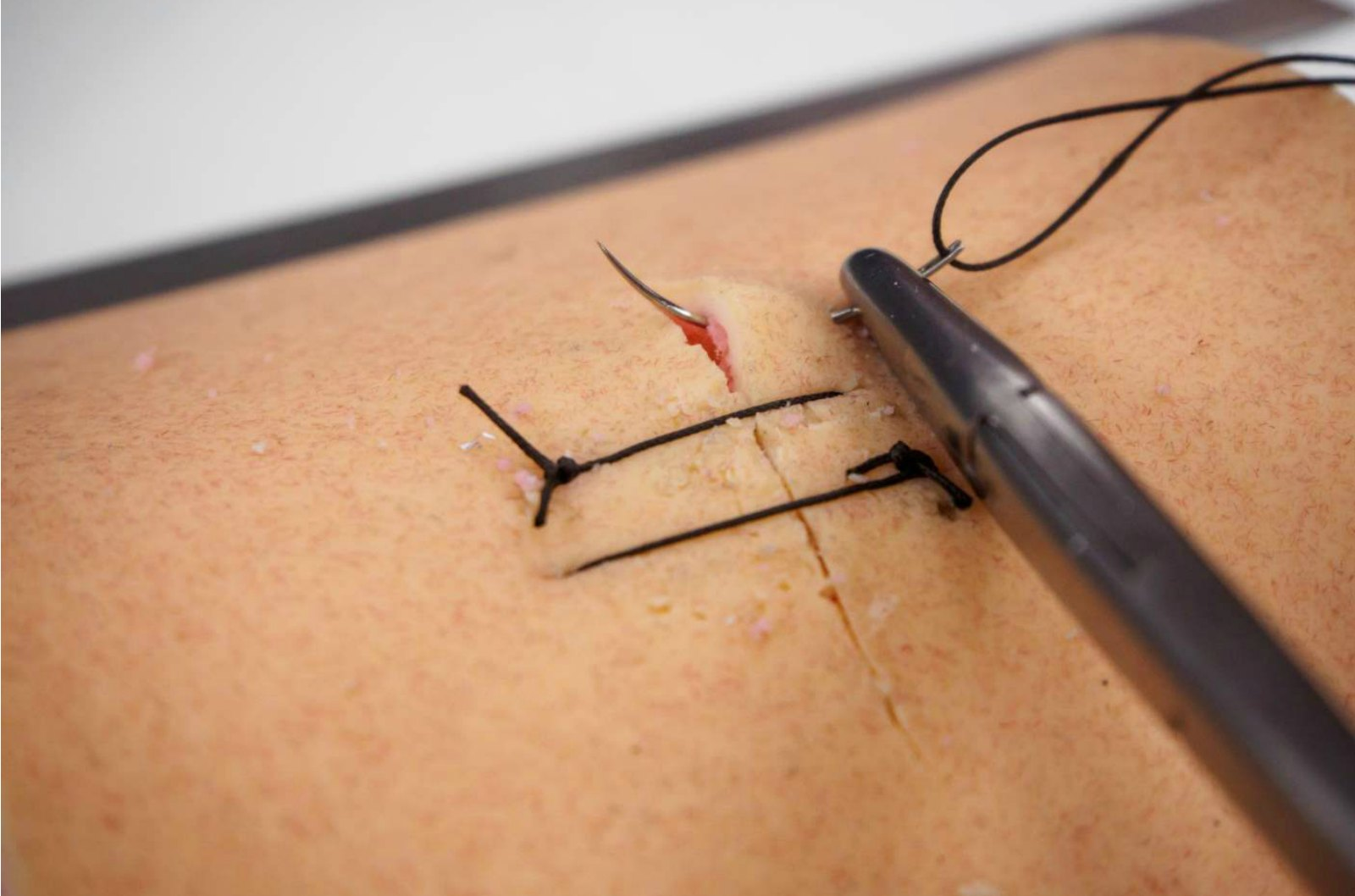 Veterinary Surgeons Make Suture Training More Like the Real Thing