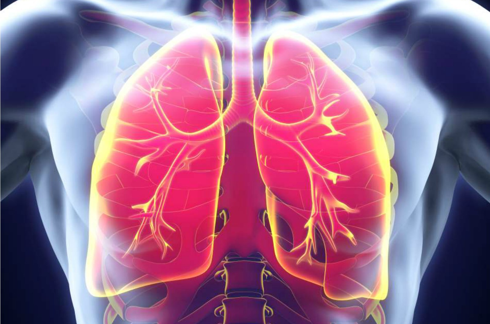 Artificial Lung Helps Patients Breathe Easier