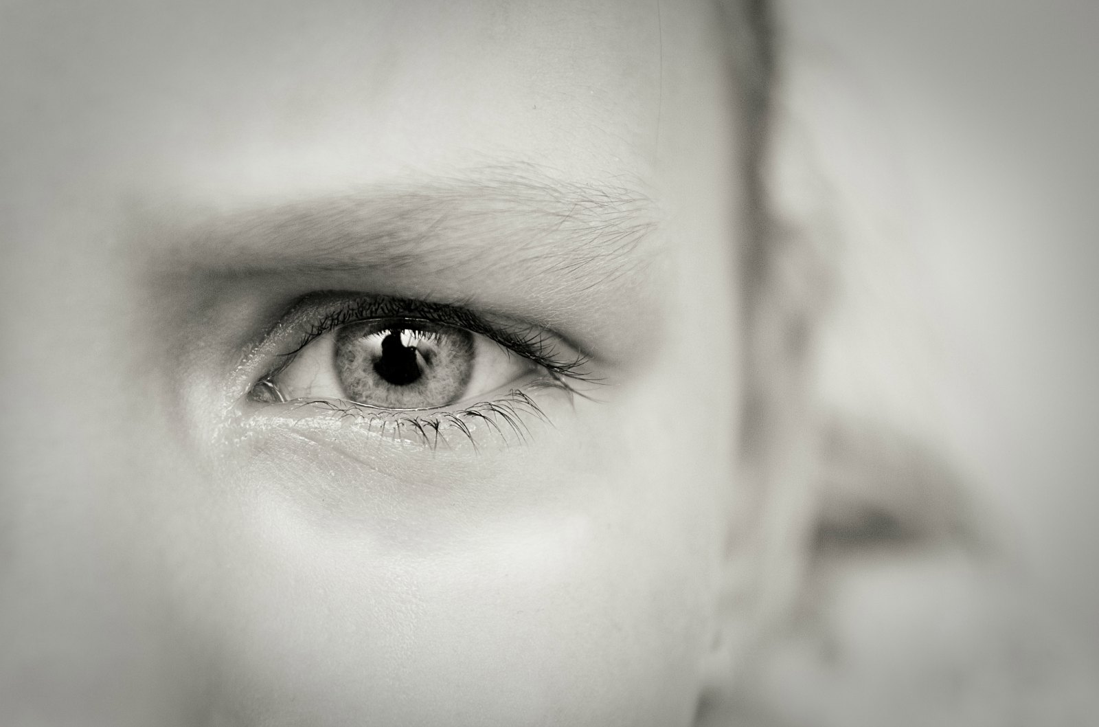 Inventors Aim to Increase Availability of Eye Screening for Diabetics