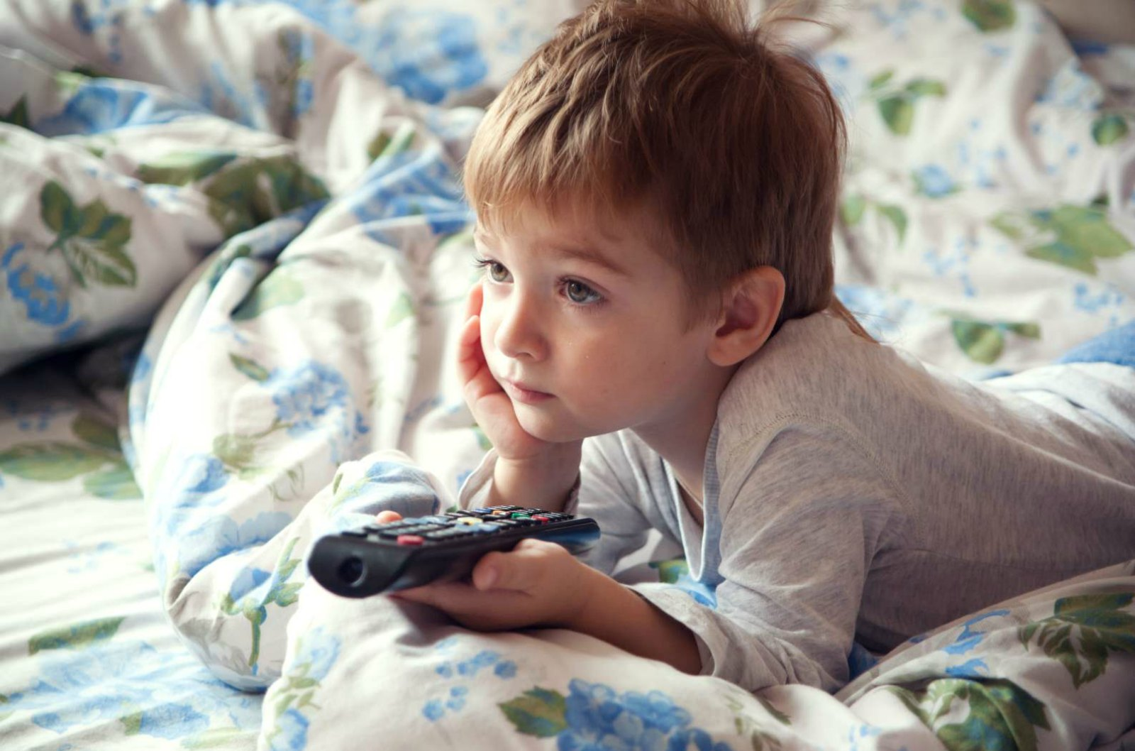 V-Chip Keeps Television Violence From Reaching Children