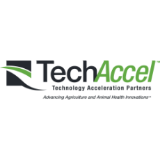 TechAccel LLC